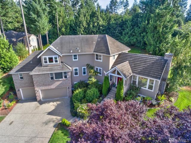5520 135th St Ct NW, Gig Harbor, WA 98332 (#1176029) :: Keller Williams - Shook Home Group