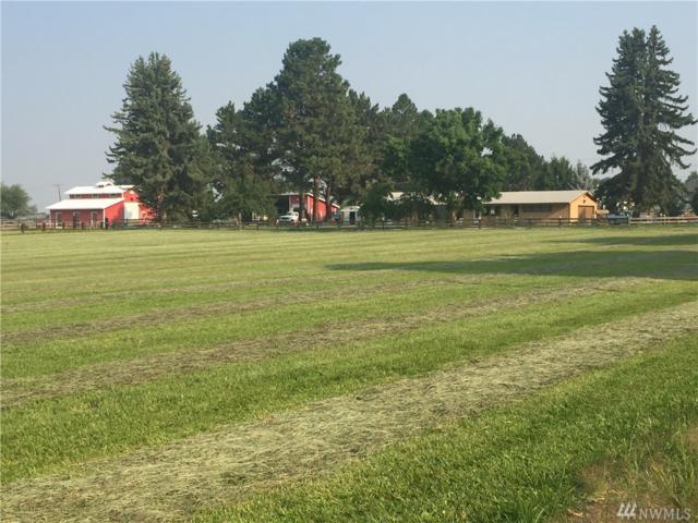 1650 Game Farm Rd, Ellensburg, WA 98926 (#1176709) :: Ben Kinney Real Estate Team