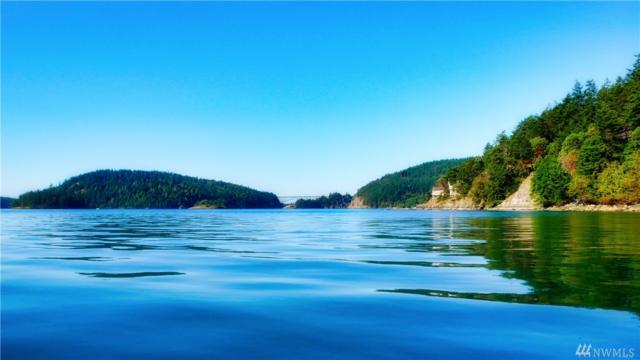 0-Lot 1 Quiet Cove Rd, Anacortes, WA 98221 (#1176915) :: Real Estate Solutions Group