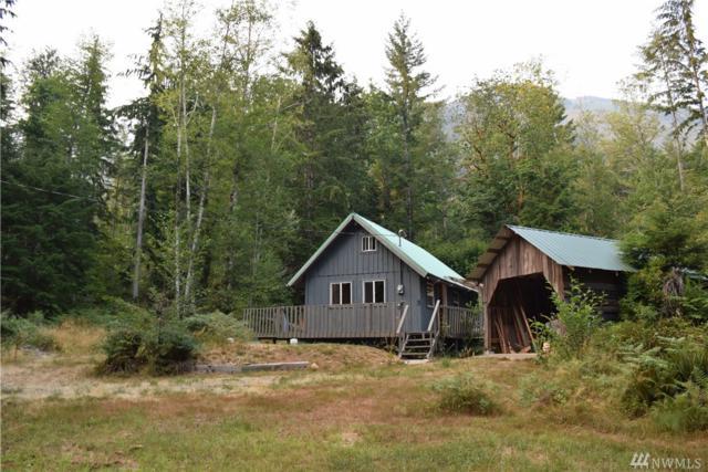 2600 Duckabush Rd, Brinnon, WA 98320 (#1176939) :: Ben Kinney Real Estate Team
