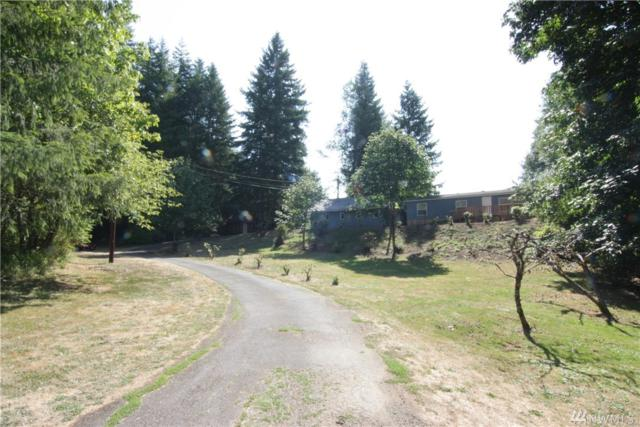 5913 State Route 6, Pe Ell, WA 98572 (#1176952) :: Ben Kinney Real Estate Team