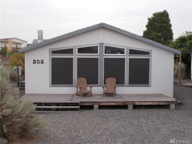 203 Green Laurel Place SW, Mattawa, WA 99349 (#1177409) :: Ben Kinney Real Estate Team