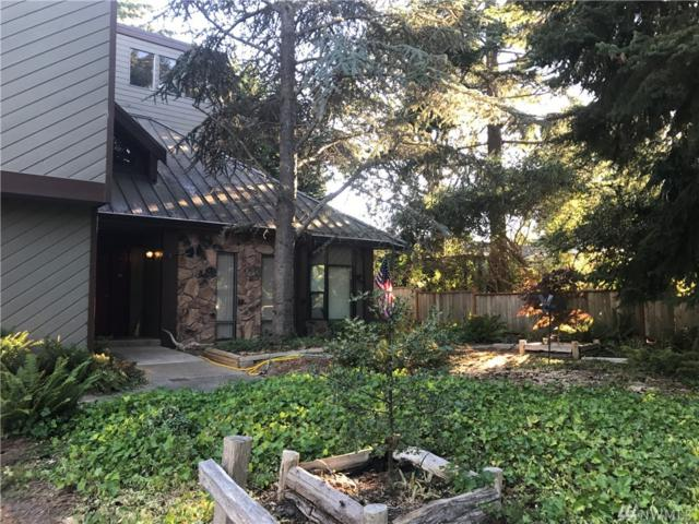 115 Leslie Lane, Sequim, WA 98382 (#1177651) :: Homes on the Sound