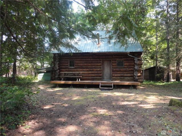 101 Elkhorn Dr, Packwood, WA 98361 (#1178007) :: Ben Kinney Real Estate Team