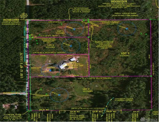 2700-Lot 4 SE Bloomfield Rd, Shelton, WA 98584 (#1178283) :: Ben Kinney Real Estate Team