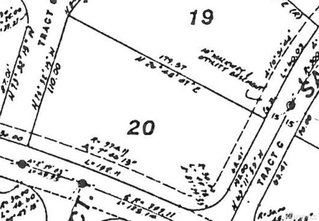 8943 Snowy Owl Lane, Blaine, WA 98230 (#1178595) :: Keller Williams - Shook Home Group