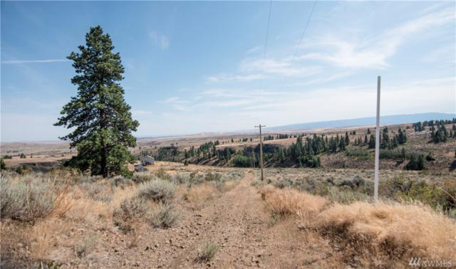 207 Wild Turkey Rd, East Wenatchee, WA 98802 (#1178661) :: Ben Kinney Real Estate Team