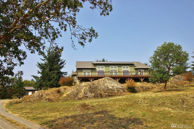391 Portland Fair Rd, San Juan Island, WA 98250 (#1178776) :: Ben Kinney Real Estate Team