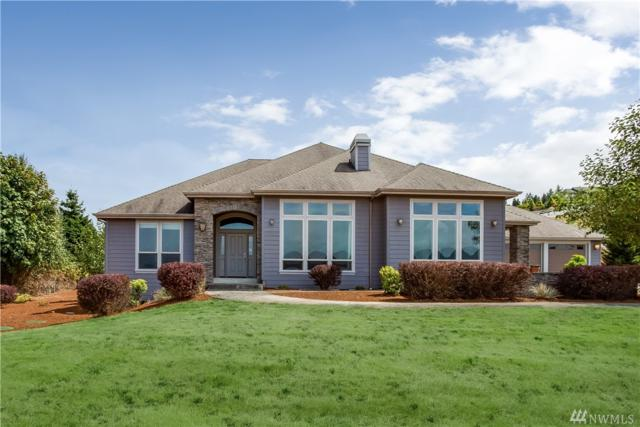 234 Lasalle Dr, Carrolls, WA 98626 (#1179442) :: Homes on the Sound