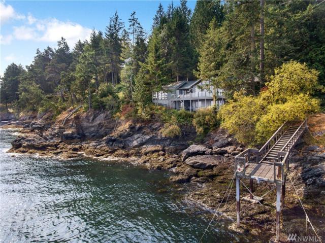 513 Mineral Point Rd, San Juan Island, WA 98250 (#1179588) :: Ben Kinney Real Estate Team