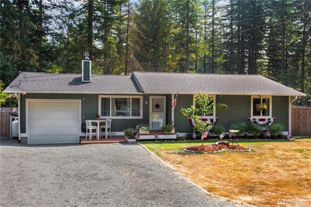 17228 428th Place SE, North Bend, WA 98045 (#1179724) :: The DiBello Real Estate Group
