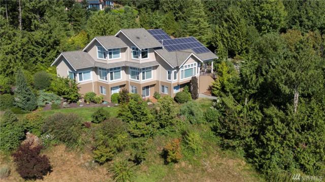 18258 Peregrine Lane, Mount Vernon, WA 98274 (#1179791) :: Ben Kinney Real Estate Team