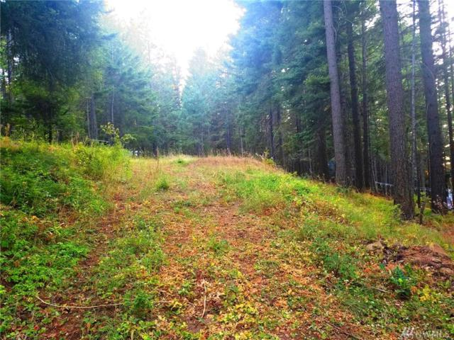 0 Sky Meadows Dr, Cle Elum, WA 98922 (#1180185) :: Homes on the Sound