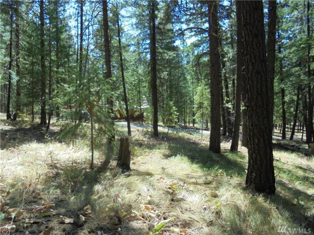 9 Mustard Mountain Rd, Winthrop, WA 98862 (#1180228) :: Ben Kinney Real Estate Team