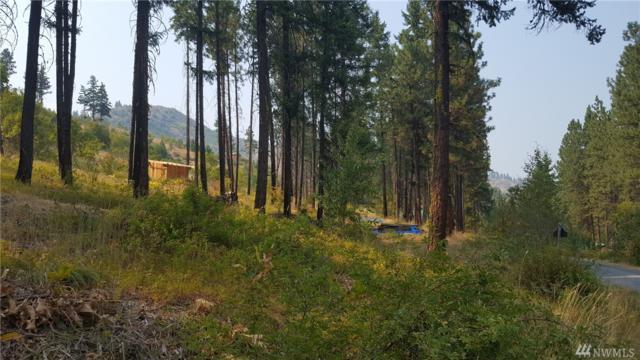 5674 Mountain Lane Rd, Peshastin, WA 98847 (#1180322) :: Ben Kinney Real Estate Team