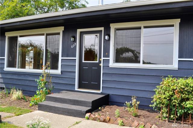 873 Heichel Rd, Camano Island, WA 98282 (#1180330) :: Ben Kinney Real Estate Team
