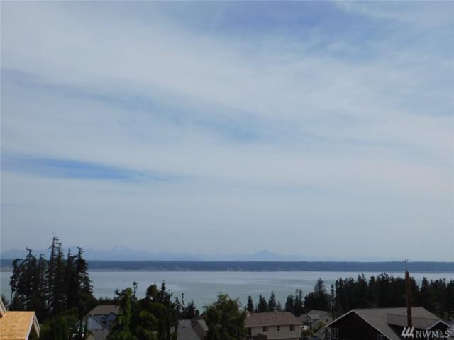 1008 Fisher King Wy, Camano Island, WA 98282 (#1180496) :: Ben Kinney Real Estate Team