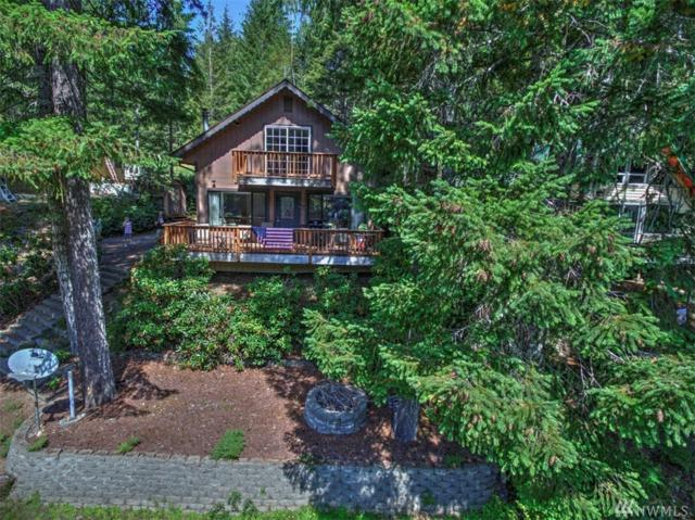 1091 NE Collins Lake Dr, Tahuya, WA 98588 (#1180904) :: Ben Kinney Real Estate Team
