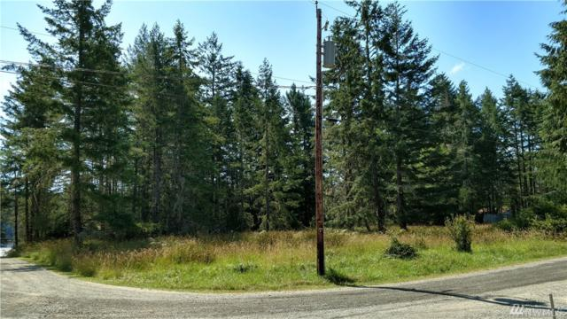 1007 E Madrona Blvd KP, Lakebay, WA 98349 (#1180942) :: Ben Kinney Real Estate Team
