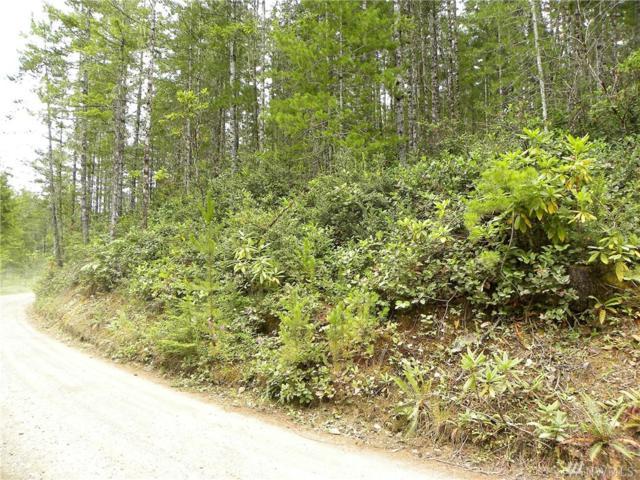 0-TR 22 NE Dewatto Hills Rd, Tahuya, WA 98588 (#1181072) :: Ben Kinney Real Estate Team