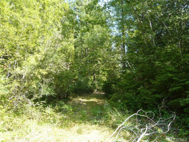 394 Woodpecker Dr, Brinnon, WA 98320 (#1181233) :: Ben Kinney Real Estate Team
