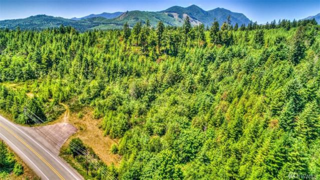 309332 Highway 101, Brinnon, WA 98320 (#1181298) :: Real Estate Solutions Group