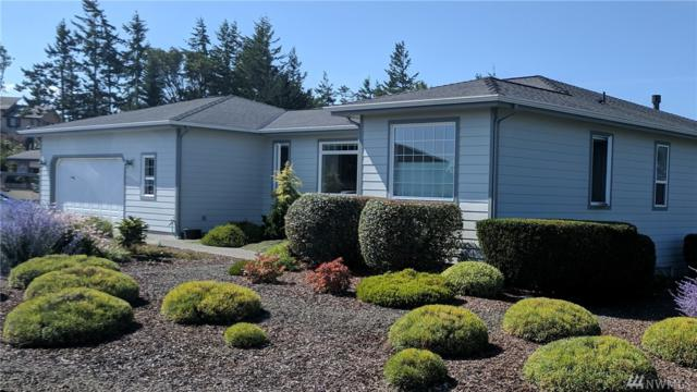 90 Lighthouse View Dr, Sequim, WA 98382 (#1181582) :: The Vija Group - Keller Williams Realty