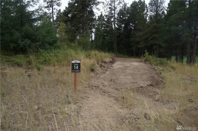 0-Lot 14 Dakota Heights Dr, Cle Elum, WA 98922 (#1181611) :: Tribeca NW Real Estate