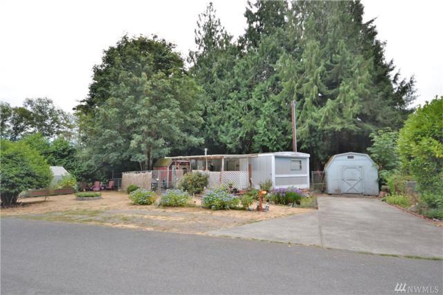 20 Glen Ave, Chimacum, WA 98325 (#1182573) :: Ben Kinney Real Estate Team