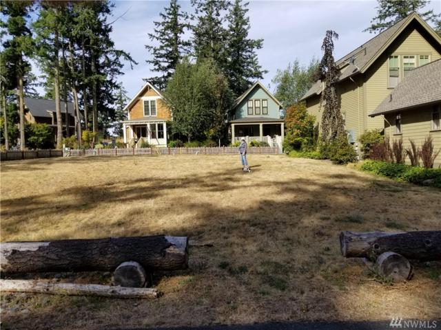 28 Cobblestone Lane, San Juan Island, WA 98250 (#1182724) :: Better Homes and Gardens Real Estate McKenzie Group