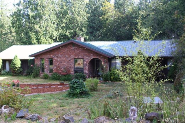 547 Brown Rd, Port Angeles, WA 98362 (#1183112) :: Better Homes and Gardens Real Estate McKenzie Group