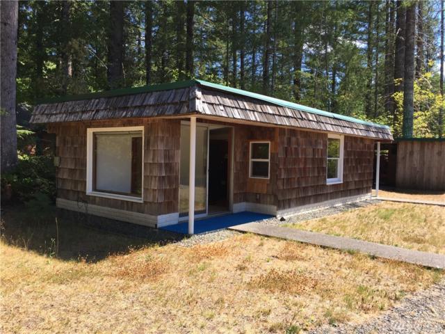 411 Hemlock Rd, Carson, WA 98610 (#1184507) :: Homes on the Sound