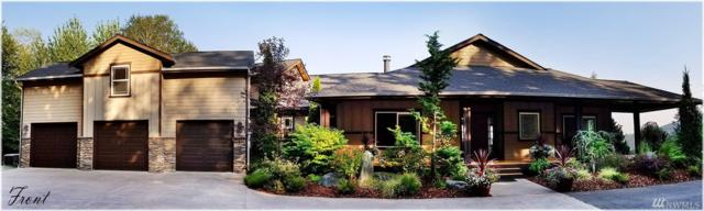 23738 Carlson Place, Mount Vernon, WA 98274 (#1184521) :: Ben Kinney Real Estate Team