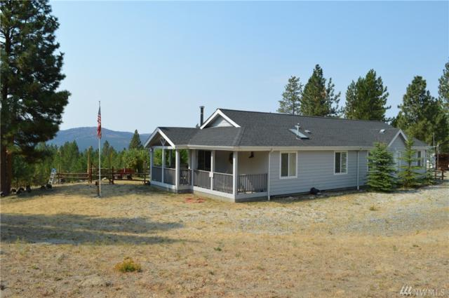 24 Look Out Trail, Riverside, WA 98849 (#1185242) :: NW Home Experts