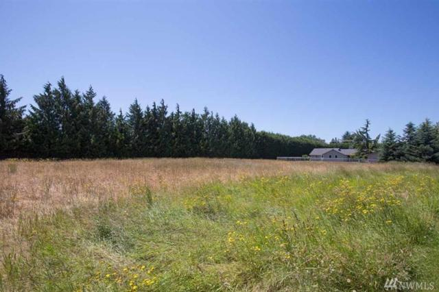 0-xxx N Kendall Rd, Sequim, WA 98382 (#1185322) :: Ben Kinney Real Estate Team