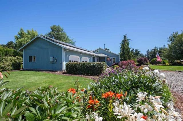 878 N Kendall Rd, Sequim, WA 98382 (#1185383) :: Ben Kinney Real Estate Team