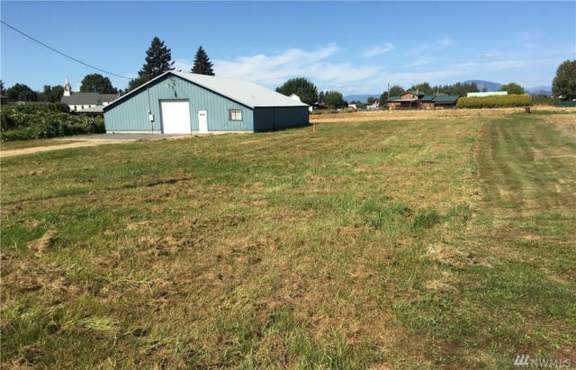 17057 Brunswick, Mount Vernon, WA 98273 (#1185544) :: Ben Kinney Real Estate Team