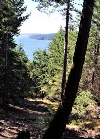 1110 Palisades Dr, Orcas Island, WA 98245 (#1185602) :: Homes on the Sound