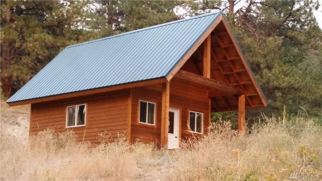 489 Bench Creek Rd, Tonasket, WA 98855 (#1185849) :: Ben Kinney Real Estate Team