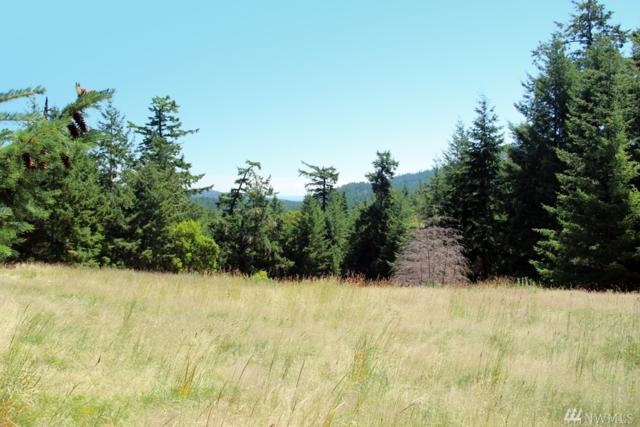 0-xxx Lawson Rd, San Juan Island, WA 98250 (#1186166) :: Ben Kinney Real Estate Team
