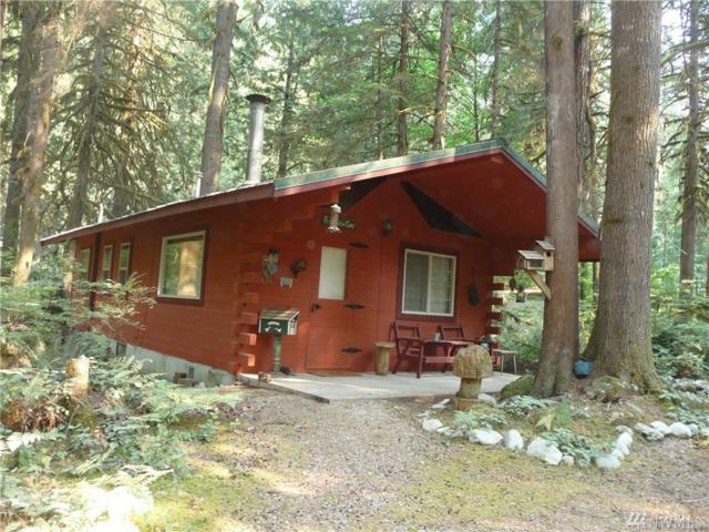8495 S Cascade Dr, Marblemount, WA 98267 (#1186229) :: Ben Kinney Real Estate Team
