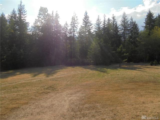 293382-Lot 1 Hwy 101, Quilcene, WA 98376 (#1186472) :: Real Estate Solutions Group