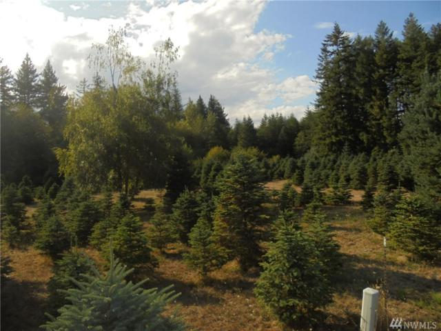293382-Lot 3 Hwy 101, Quilcene, WA 98376 (#1186497) :: Keller Williams Everett