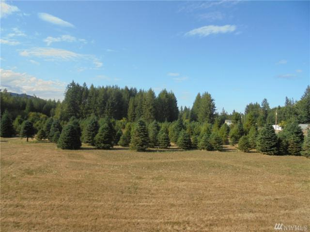293382-Lot 4 Hwy 101, Quilcene, WA 98376 (#1186501) :: Tribeca NW Real Estate
