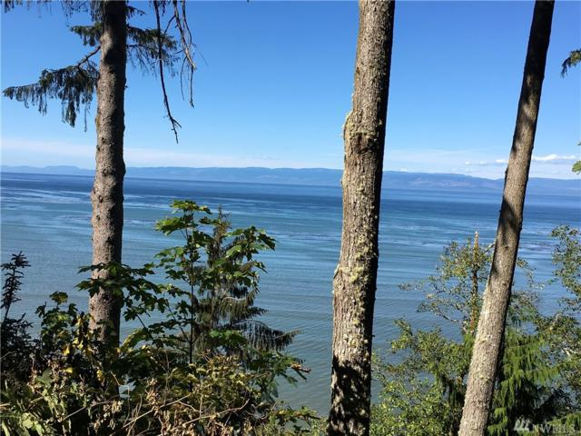 0-xxx E Dew Knot Enter Rd, Port Angeles, WA 98363 (#1186567) :: Homes on the Sound