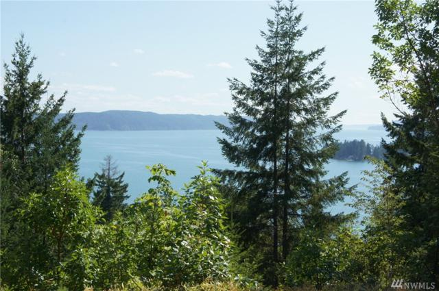 101 Cirque Dr, Brinnon, WA 98320 (#1186859) :: Homes on the Sound