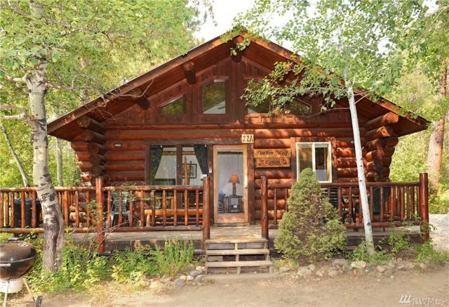 22 Wolf Ridge Lane, Winthrop, WA 98862 (#1186945) :: Ben Kinney Real Estate Team