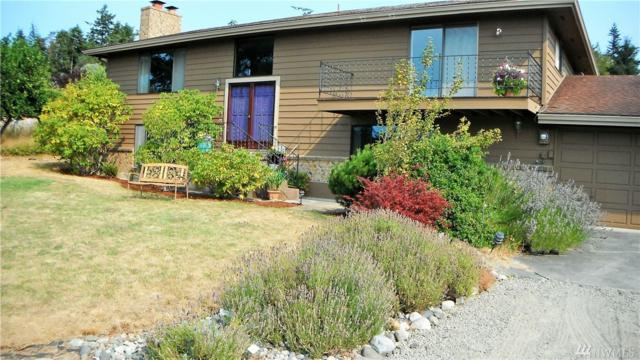 181 S Rhododendron Dr, Port Townsend, WA 98368 (#1186951) :: Ben Kinney Real Estate Team