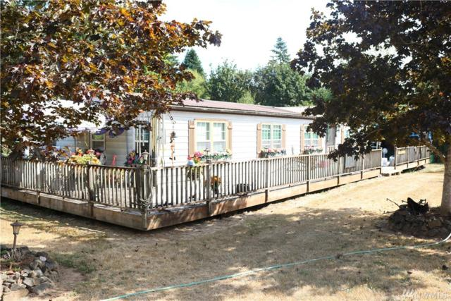 48 Campion Rd, Oakville, WA 98568 (#1187141) :: Ben Kinney Real Estate Team