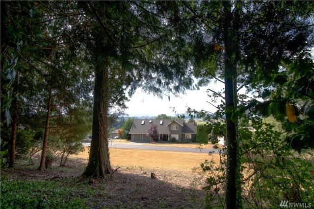 20485 Daisy Lane, Conway, WA 98274 (#1187206) :: Ben Kinney Real Estate Team